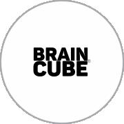 10. brain